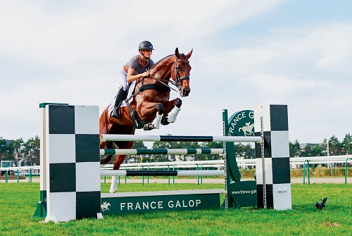 Fourth edition of Retrained Racehorse Day at Deauville a great success
