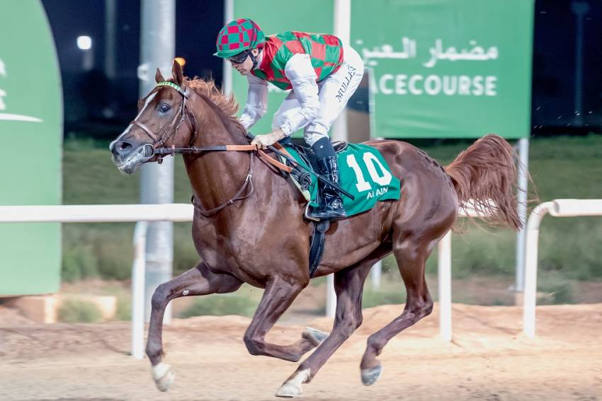 Can Musheer Al Wathba deny a group of course and distance winners in feature?