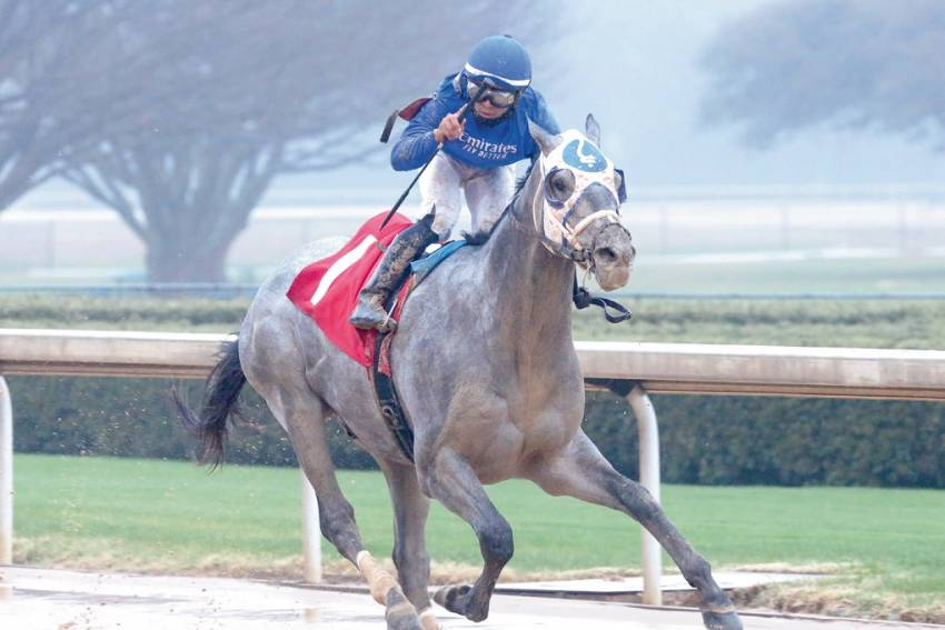 Tis Essential Quality remains if to be genuine Kentucky Derby contender