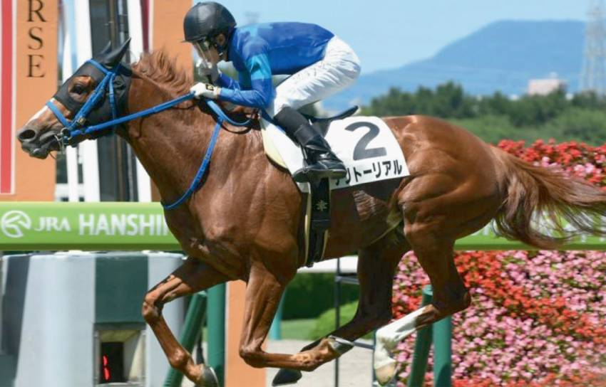 Another Group 3 placing for Territorial in Fukushima Kinen