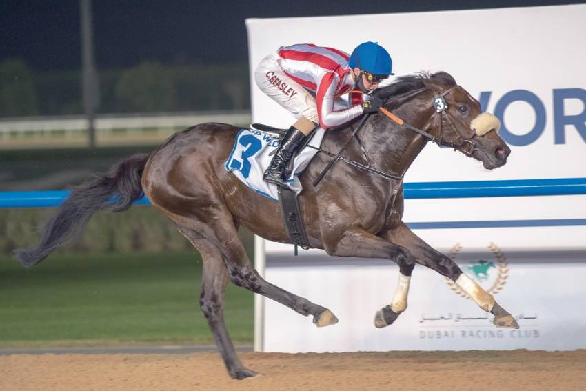 Zhou Storm will look blow away opposition, while Dehbashi and Native carry equal Appeal