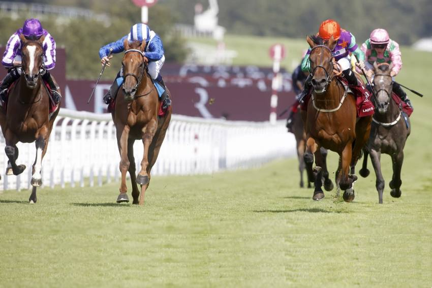 Jarvis long running Group 1 jinx ends with Lady Bowthorpe s Nassau Stakes triumph