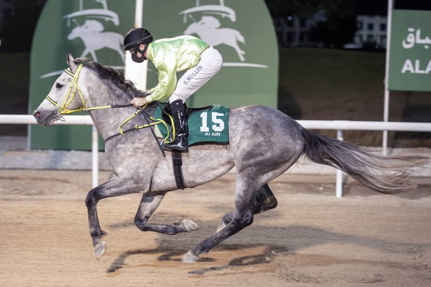 Alalawi and Al Balushi win Al Ain Sprint feature as Trainers' Championship race hots up