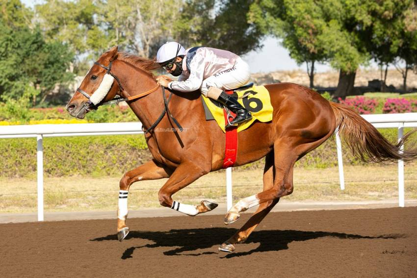 Bin Ghadayer Jebel Ali treble highlighted  by Tailor's Row in feature