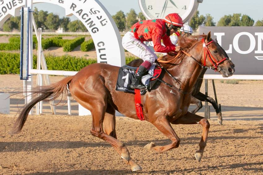 Double for Al Neyadi, while Al Kalbani wins GCC Cup for Oman with Al Roba'A Al Khali