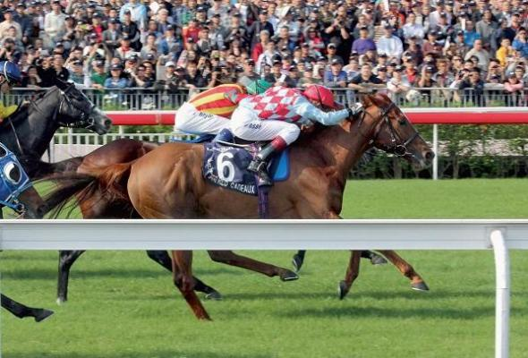 Bahrain winners galore for Mosse whose eyes now set on more Meydan success