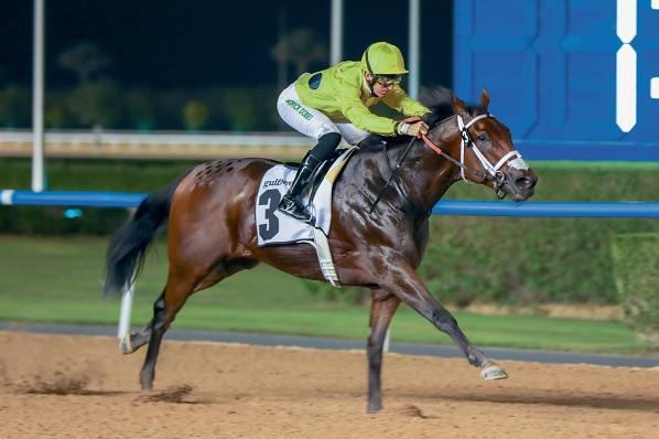Excited Watson looking at his century after hitting Meydan six