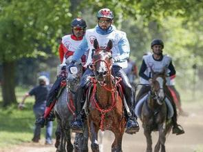 Sheikh Mohammed in endurance action but Sheikh Hamdan leads the way