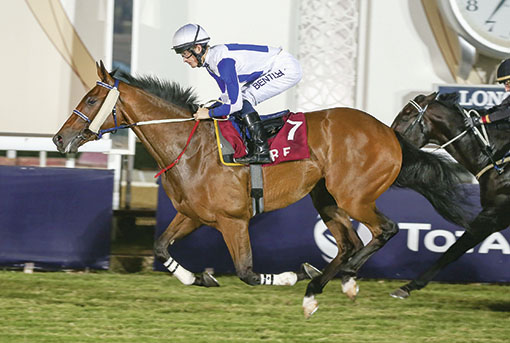 Derby Day in Doha