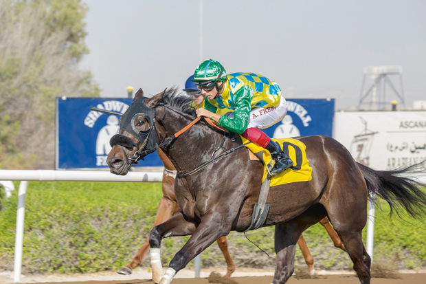 May need To be Brave and patient! - Jebel Ali Preview (Friday)