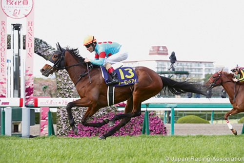 Almond Eye deemed to be looking sharp as she heads to Dubai