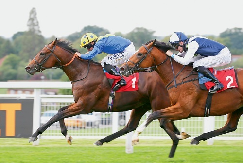 Duty could be in Line for Epsom