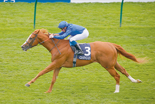 Guineas double for O'Brien and Maqsad stars for Sheikh Hamdan