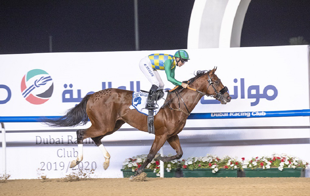 Double feature joy for Al Mheiri as Military Law shoots down Gronkowski; hat-trick for prolific Watson