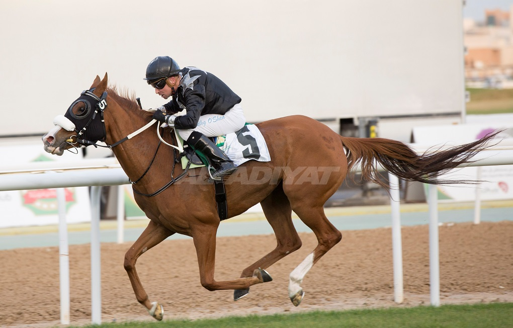 De Roualle Tag OShea Al Rayhi Crowley among winners on President Cup night in Abu Dhabi