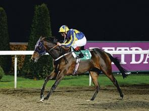 Aussie to Reign at Meydan?