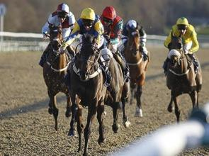 Litigant wins his case at Lingfield