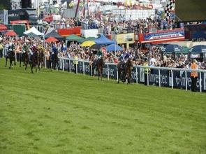 Australia conquers in Epsom Derby