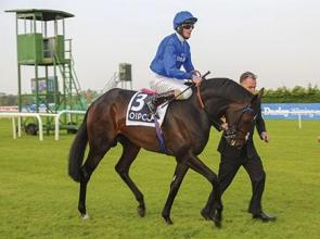 Godolphin's Trading Leather seeks Japan Cup glory