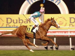 First foal for Cityscape