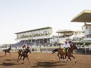 UAE fixture list unveiled