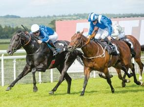 Good Festival for Godolphin headed by new additions