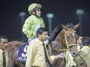 A treble for Al Alawi but 'Balad' is sweet music to ears of Jara and Al Ajban Stables