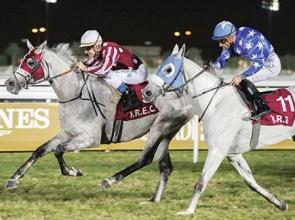De Mieulle and Peslier make merry for a change with a night of trebles in Doha