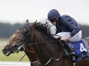 Winter warms up a damp Curragh and Knight is Decorated at top table again