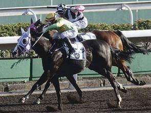 Emperor looks a Classic World Cup contender, his trainer says So!