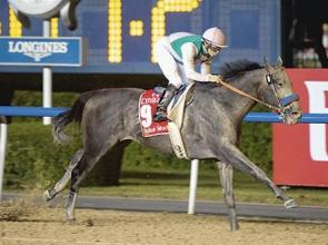 Soumillon, O'Brien, Lady Eli and Arrogate in race to win People's Choice Award